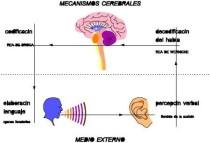 lenguaje, comunicación, trastorno del habla